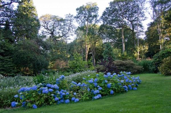 picton garden Gardens - Picton Castle & Gardens