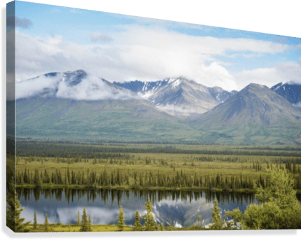 Scenic view inside Denali National Park and Preserve  Interior         Scenic view inside Denali National Park and Preserve  Interior Alaska   Summer Canvas Print