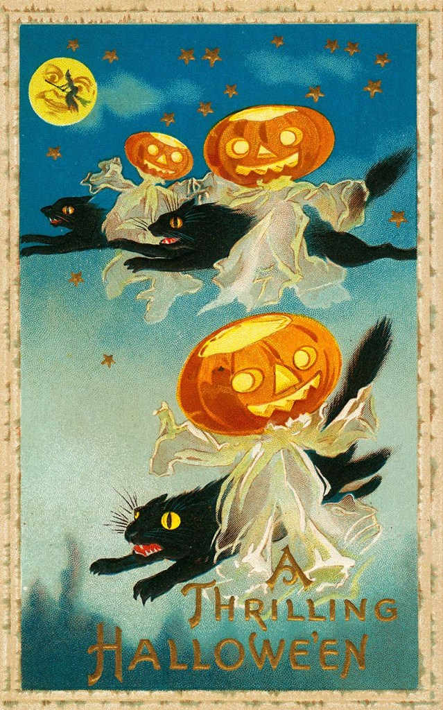 Vintage Halloween Postcard with 3 Jack-O-Lanterns and 3 black cats