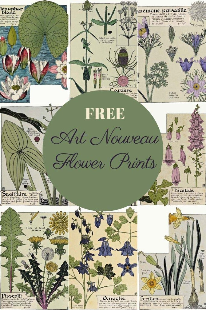 Free art Nouveau flower prints