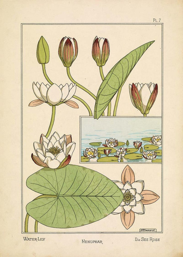 Maurice P. Verneuil Water Lilly