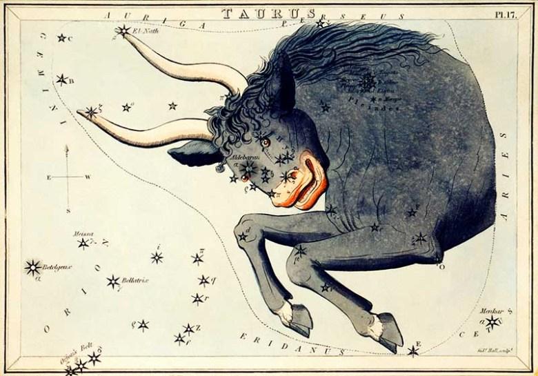 Taurus Zodica sign