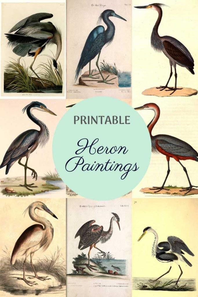 free vintage heron paintings