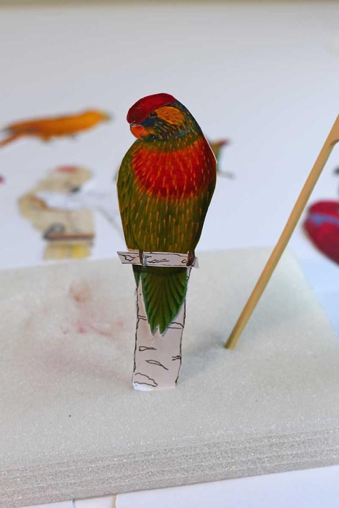 Parrot in foam