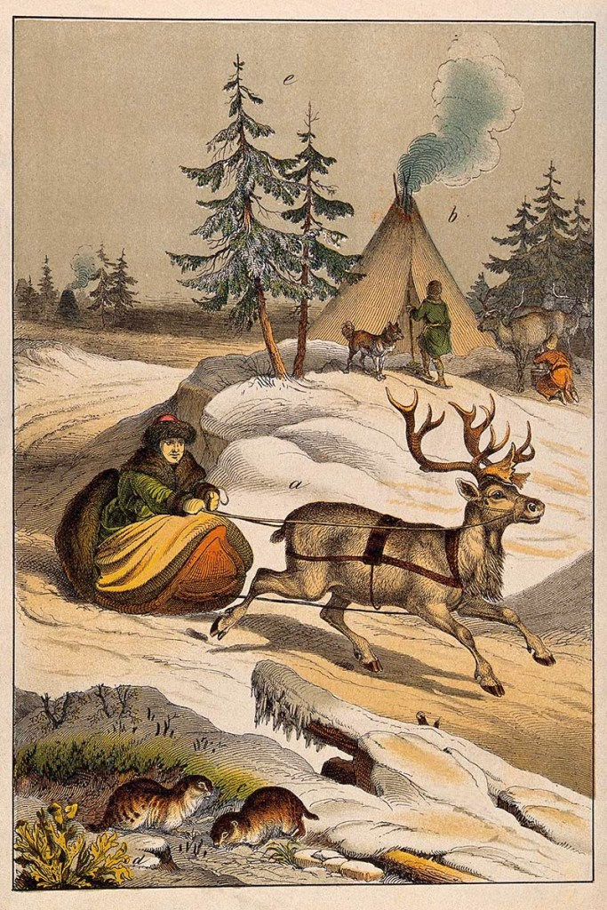 man in sleigh with reindeer