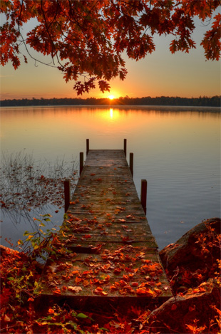fall season photography