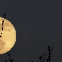 Moon Photography Tips – PictureCorrect