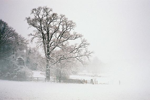 snow scene photography