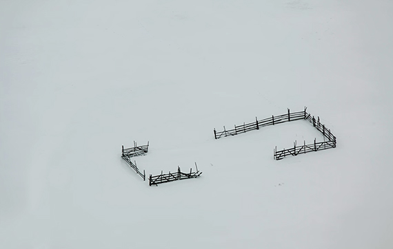 winter photography minimalism