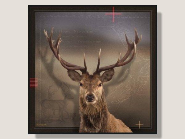 Julian Hindson Deer