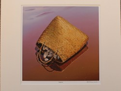Reprieve Matted Print by Barry Ross Smith