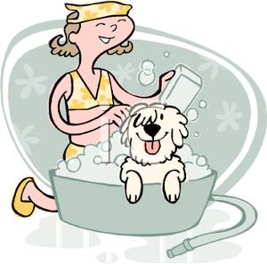 A Girl Giving Her Dog a Bath In a Wash Tub - Royalty Free Clipart Picture