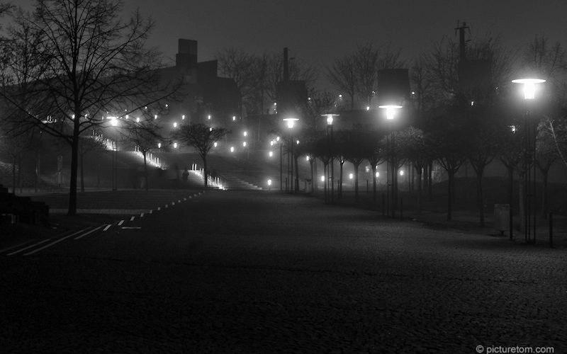 Nebelnacht am Rhein