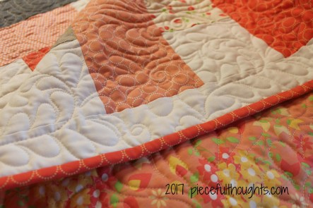 Friday Finish #4 - quilting detail (c) 2017 piecefulthoughts.com