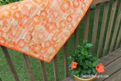 Mini Quilt Back - piecefulthoughts.com
