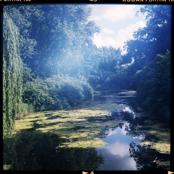 2016_tiergarten