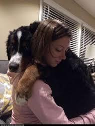 Owner & Dog Hug