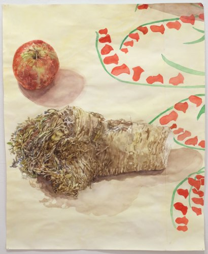 """Dawn Clements - 'Apple and Horseradish,"""" 2014, Watercolor on paper, 27.5 x 22 inches. Sold"""