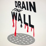 Diana Cooper - Drain the Wall