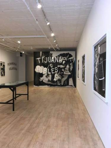 "Hugo Crosthwaite - ""Tijuana Bibles,"" Installation View, October 2018"