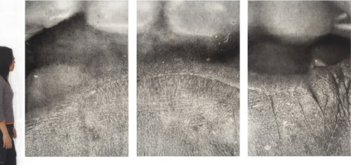 Cropc2aCrop7detMouth89, 2008, Graphite and charcoal on paper, 60.5 x 128 inches