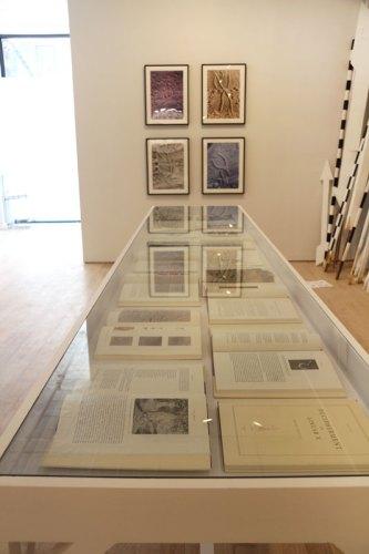 """no title - """"False Narratives"""" Installation View, June 2016 (Brian Conley)"""