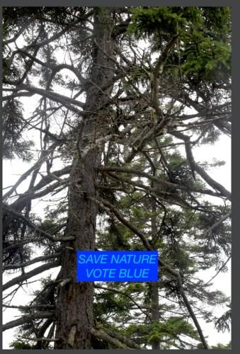 Charles Hagen - Save Nature Vote Blue