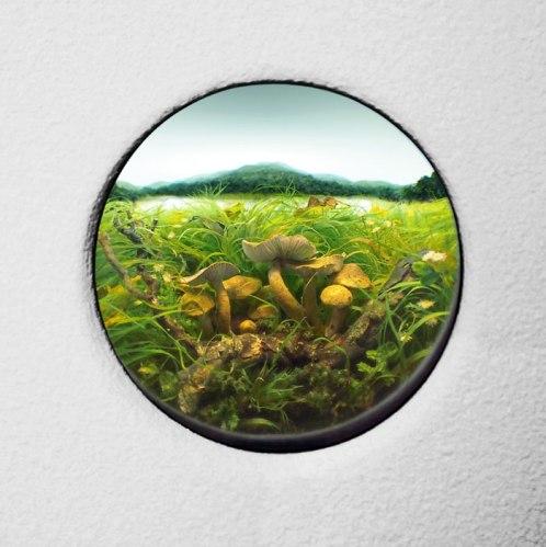 "Patrick Jacobs - ""Fairy Ring Mushroom Cluster #5,"" 2012"