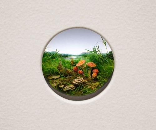 Fly Agaric Mushroom Cluster #9 - 2014, Styrene, acrylic, cast neoprene, paper, ash, talc, starch, polyurethane foam, acrylite, vinyl film, wood, steel, lighting, BK7 glass. Diorama viewed through 2 inch (5 cm) window. 11.25 x 14.75 x 9.25 inches (29 x 37 x 24 cm)