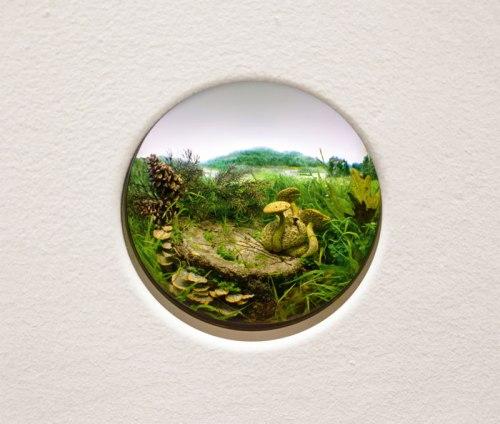 Parasitic Bolete with Pine Cones - 2014, Styrene, acrylic, cast neoprene, paper, hair, polyurethane foam, ash, talc, starch, acrylite, vinyl film, copper, wood, steel, lighting, BK7 glass. Diorama viewed through 2.75 in. (7 cm) window. Interior box dimensions:  18.5 (W) x 12.75 (H) x 11.5 (D) in. (47 x 32 x 29 cm).