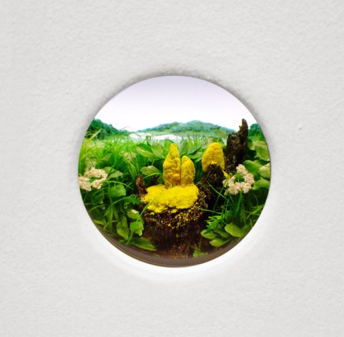 "Patrick Jacobs - ""Yellow Slime Mold with Stump,"" 2015, Styrene, acrylic, cast neoprene, paper, ash, talc, starch, polyurethane foam, acrylite, vinyl film, wood, steel, lighting, BK7 glass. Diorama viewed through 2 inch (5 cm) lens.  Interior box dimensions: 14.75  x 11.25 x 9.25 inches"