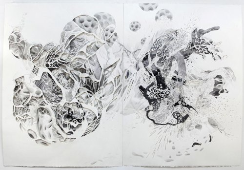 """Darina Karpov - """"Recombinant 2,"""" (Diptych), 2009-2017, Watercolor, ink, graphite, collage on paper, 30 1/8 x 44 1/8 inches overall"""