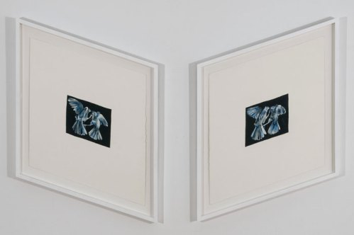 Mirror Bird - 2012, Diptych, gouache on paper, 25 x 19 inches (each)