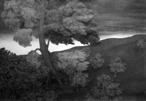 Giant Tree - 2008, Graphite on Paper, 35 x 50 inches
