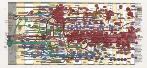 "Ward Shelley - ""Fluxus v. 3,"" 2012, oil and toner on mylar, 35 x 74 inches"