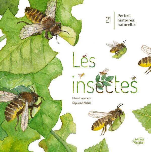 Les insectes_BD