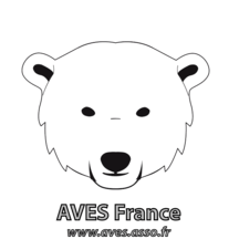 normal_avesfrance-1542321714