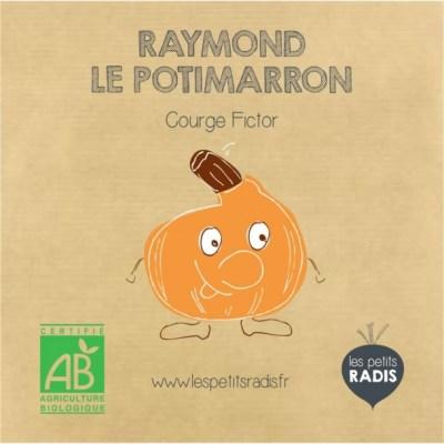 graines-de-raymond-le-potimarrons