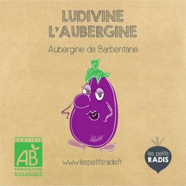 graines-de-ludivhine-l-aubergine