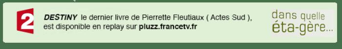 pluzzfrance tv