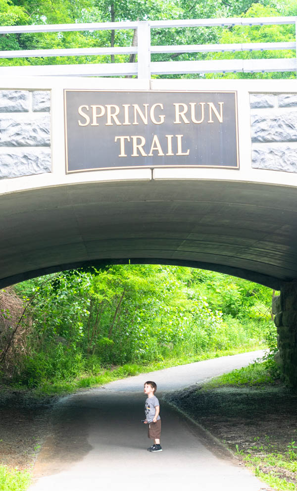 spring run trail saratoga