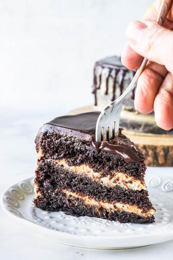 Chocolate Peanut Butter Vegan Cake