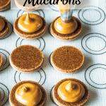 vegan biscoff macarons filling