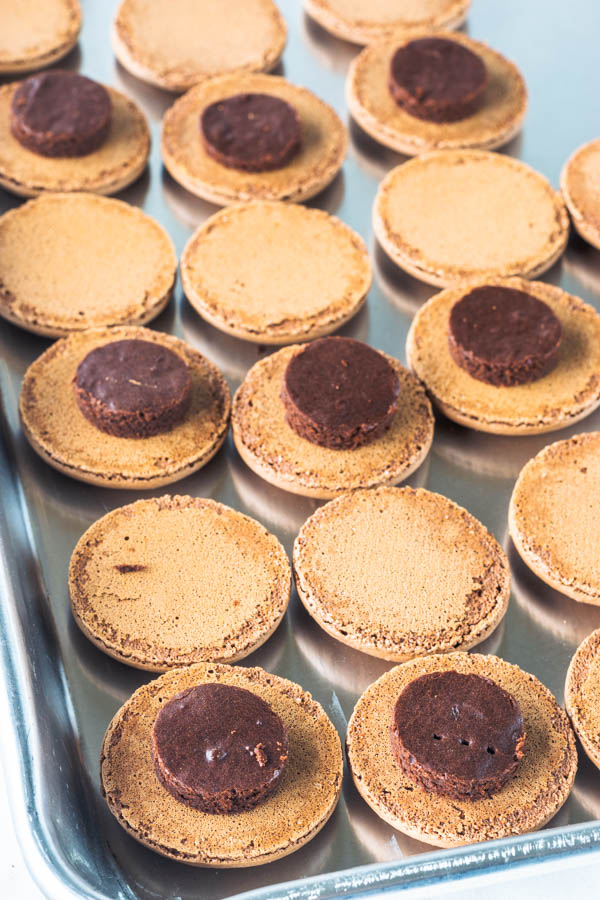 chocolate macarons with brownie circle on top