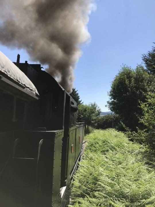 treno sila vapore