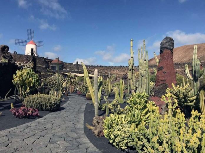 cosa vedere lanzarote jardin cactus