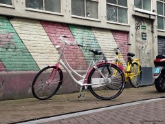 Amsterdam - Documentary photography by Stefanie Pietschmann