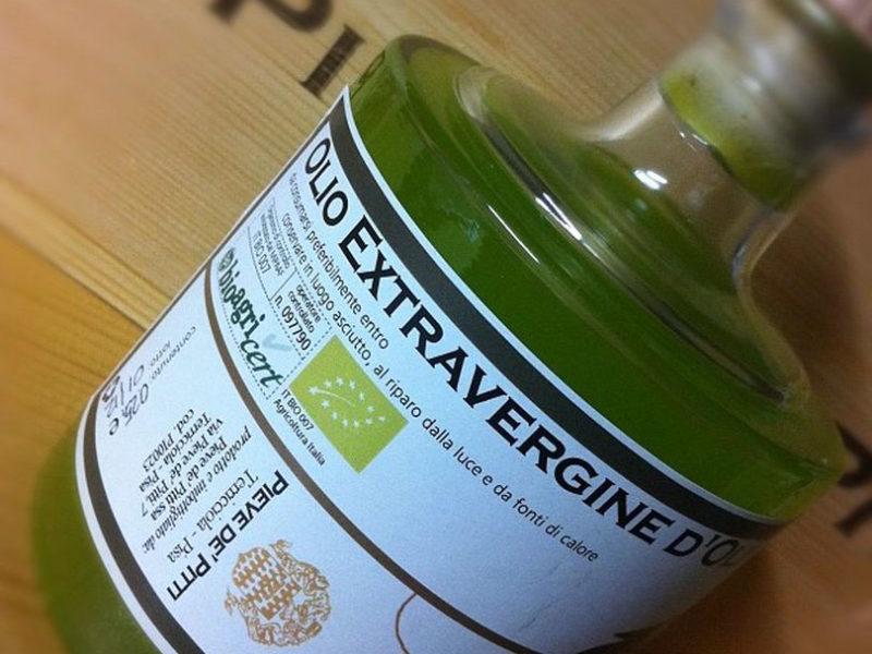 oliveharvest5