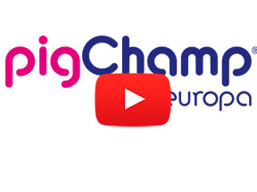 Video presentación PigCHAMP Pro Europa
