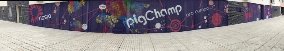 Nuevas oficinas PigCHAMP